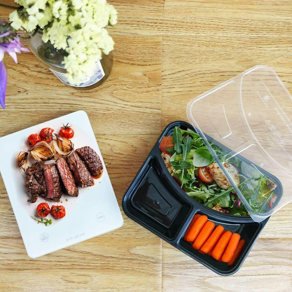 with Lids Containers Food Bento Box