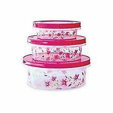 3 Piece Milton Keepex Food Container Keeper Plastic Boxes Ki