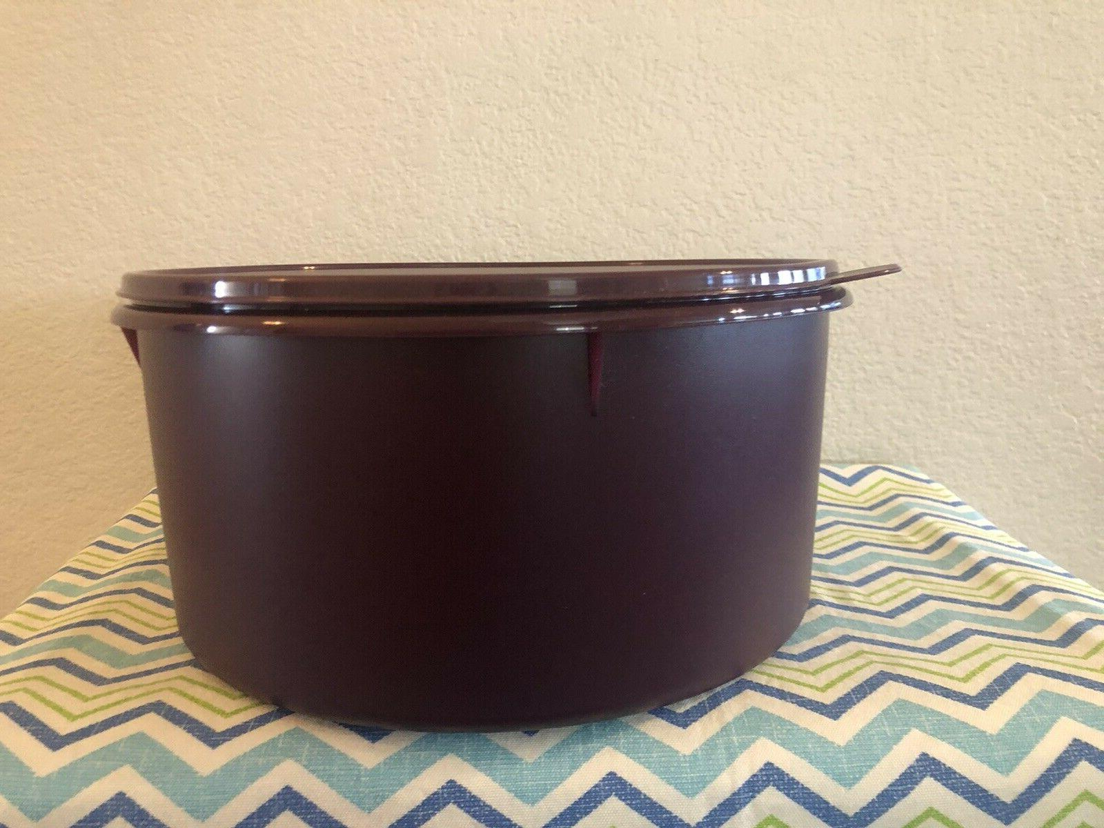 Tupperware Style Storage Container Plum